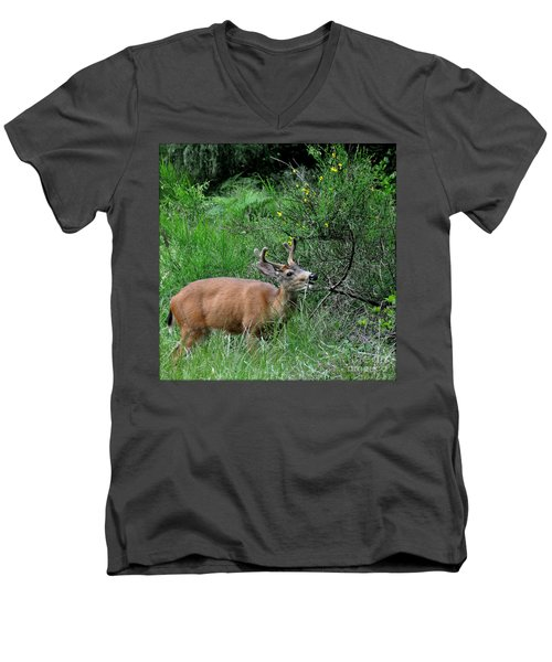 Men's V-Neck T-Shirt featuring the photograph Deer Brunch by Tanya Searcy