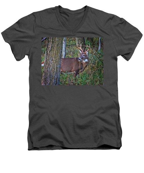Deer In The Woods Men's V-Neck T-Shirt