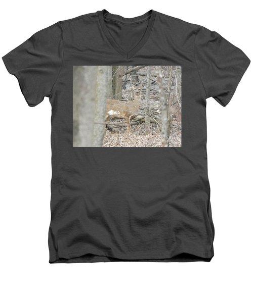 Deer Keeping Watch Men's V-Neck T-Shirt