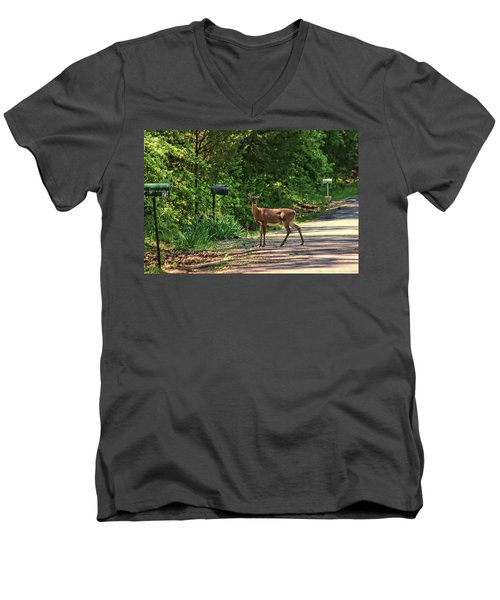 Deer Loves Flowers Men's V-Neck T-Shirt by Rick Friedle