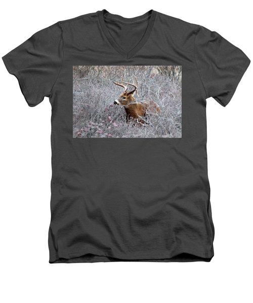 Deer On A Frosty Morning  Men's V-Neck T-Shirt by Nancy Landry