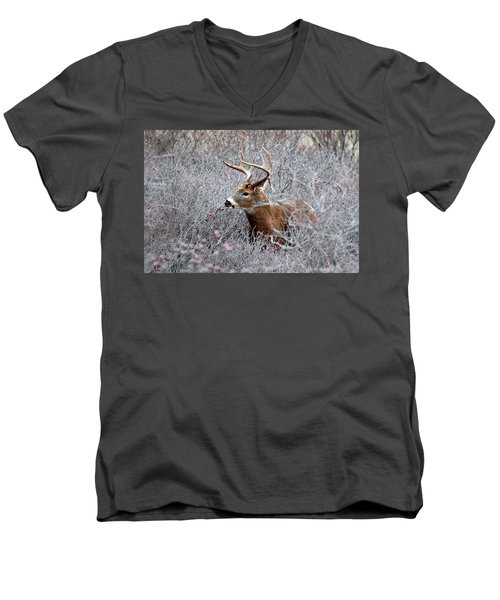 Deer On A Frosty Morning  Men's V-Neck T-Shirt