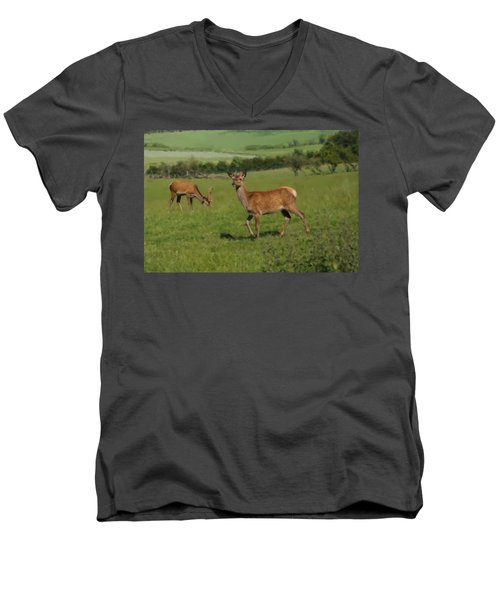 Deers On A Hill Pasture. Men's V-Neck T-Shirt