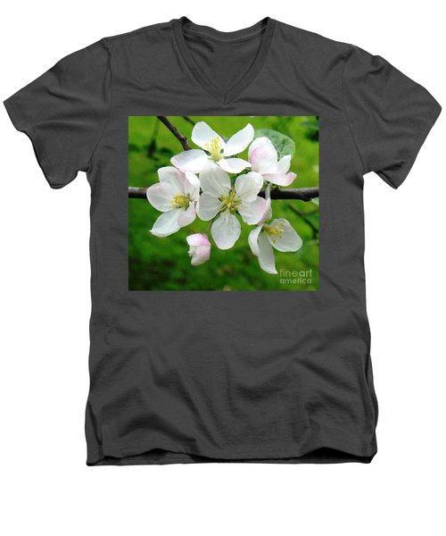 Delicate Apple Blossoms Men's V-Neck T-Shirt