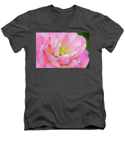Delicate Tutu Men's V-Neck T-Shirt