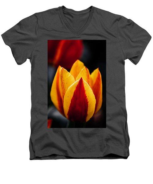 Deliciosa Men's V-Neck T-Shirt