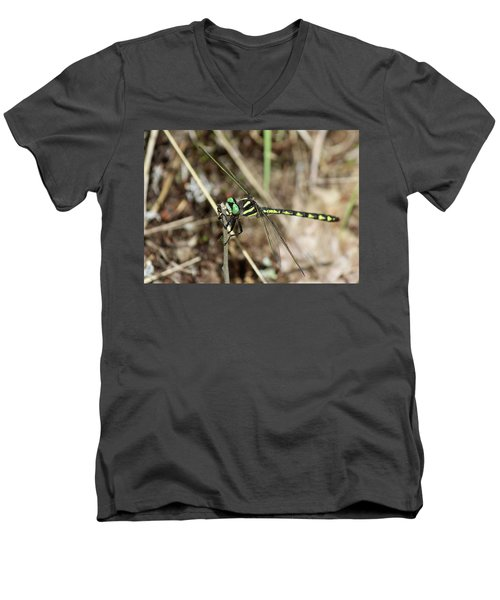 Delta-spotted Spiketail  Male Men's V-Neck T-Shirt