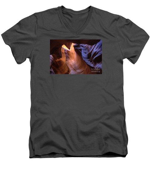 Desert Camel Men's V-Neck T-Shirt