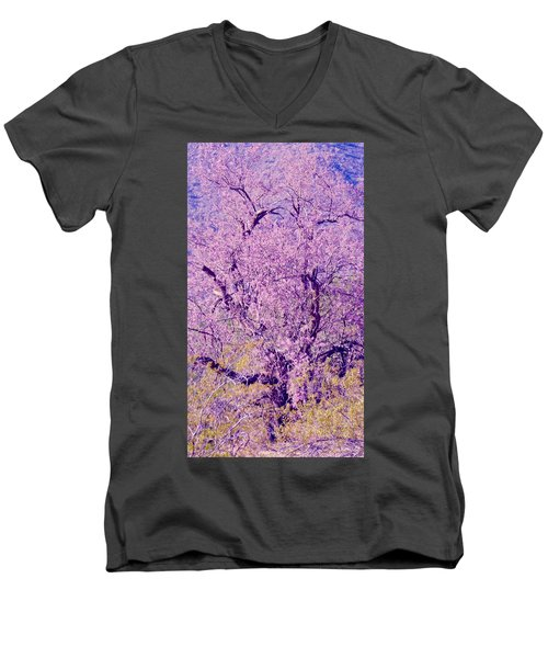 Desert Ironwood  Beauty 2 Men's V-Neck T-Shirt