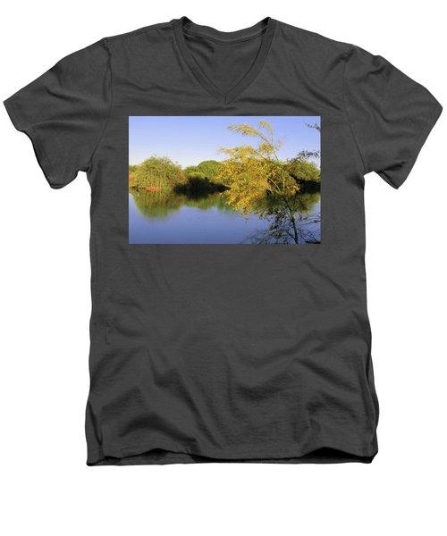 Desert Oasis Men's V-Neck T-Shirt