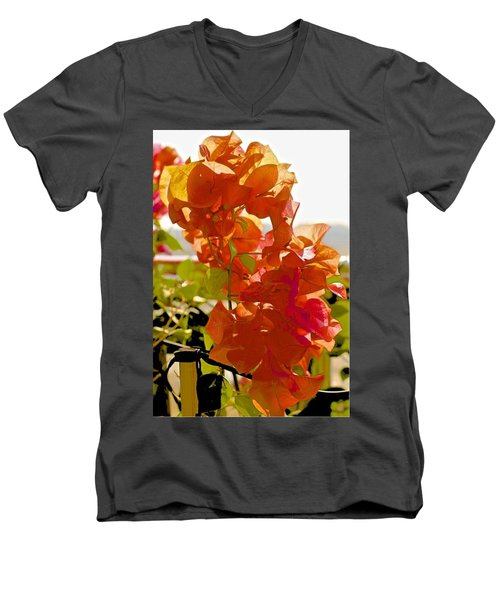 Desert Orange Men's V-Neck T-Shirt