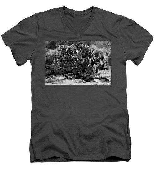 Desert Prickly-pear No7 Men's V-Neck T-Shirt