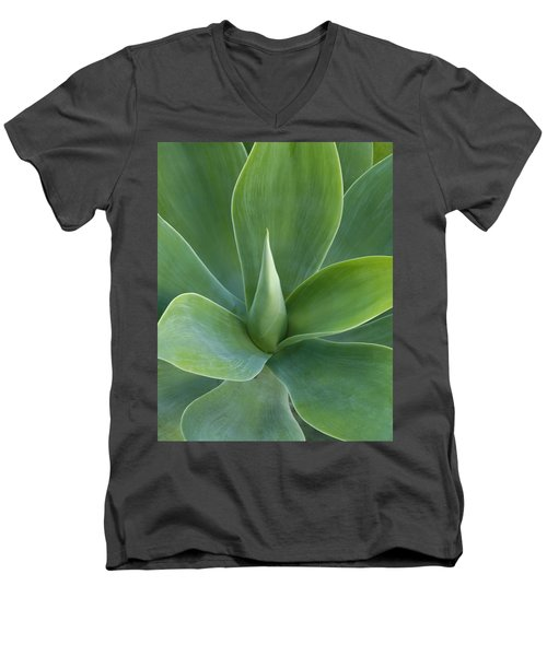Desert Rose Men's V-Neck T-Shirt