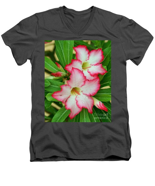 Desert Rose With Buds And Water Men's V-Neck T-Shirt by Larry Nieland