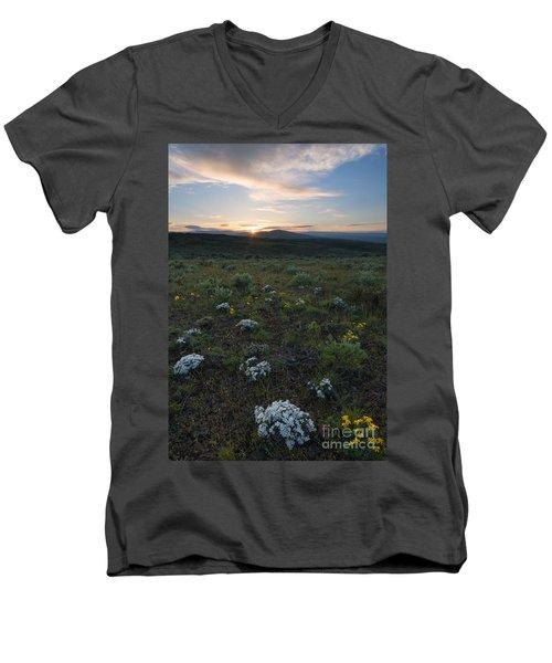 Desert Sunburst Men's V-Neck T-Shirt