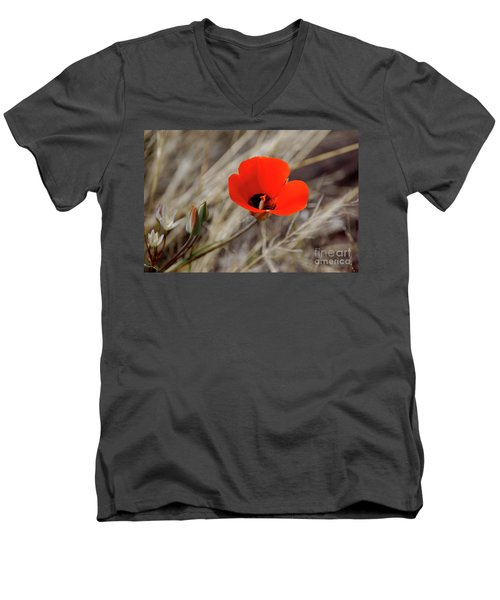 Desert Wildflower Men's V-Neck T-Shirt