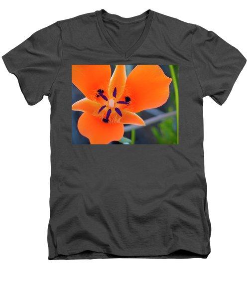 Desert Wildflower Men's V-Neck T-Shirt