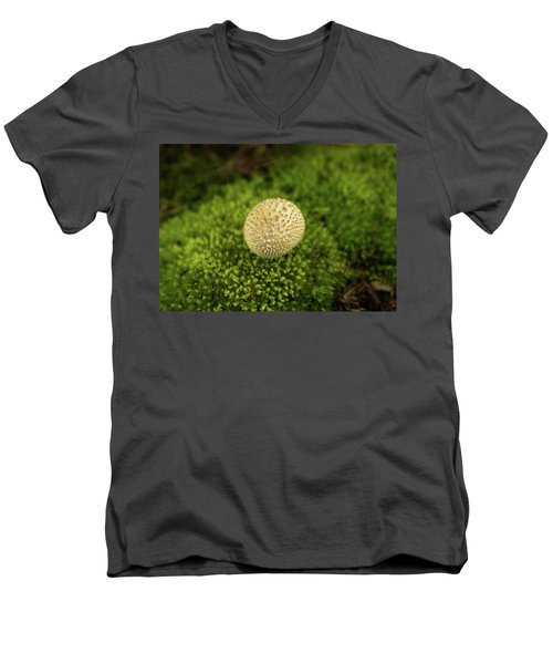 Developing Mushroom On A Bed Of Moss Men's V-Neck T-Shirt