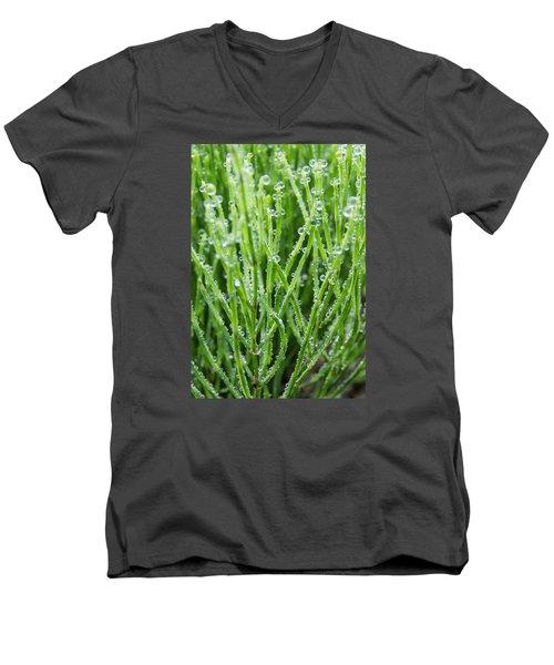 Dew Drop Men's V-Neck T-Shirt