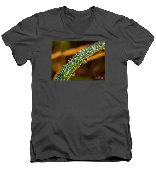 Dew Drop Reflection Men's V-Neck T-Shirt by Tom Claud