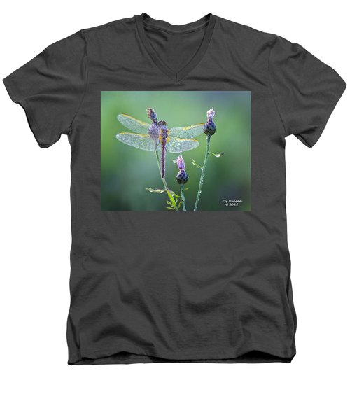 Dew Laden Dragonfly Men's V-Neck T-Shirt