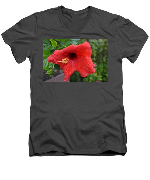 Dew On Flower Men's V-Neck T-Shirt