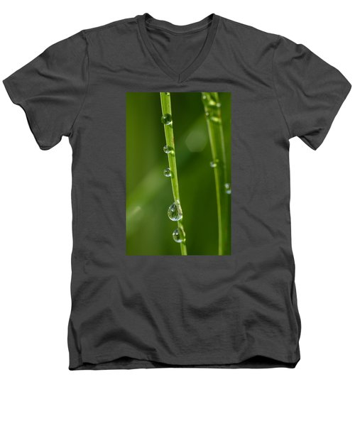 dew Men's V-Neck T-Shirt