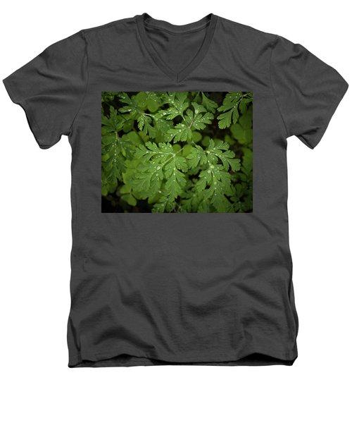 Dewey Leaves Men's V-Neck T-Shirt