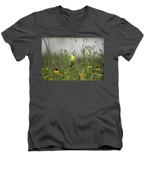 Men's V-Neck T-Shirt featuring the photograph Dickcissel With Mexican Hat by Robert Frederick
