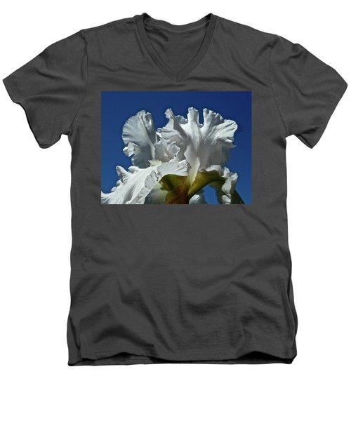 Did Not Evolve Men's V-Neck T-Shirt