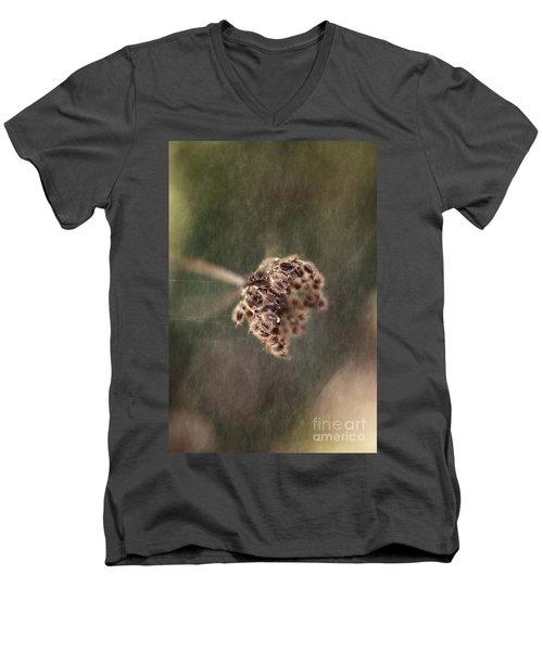 Die Reifen Samen Men's V-Neck T-Shirt