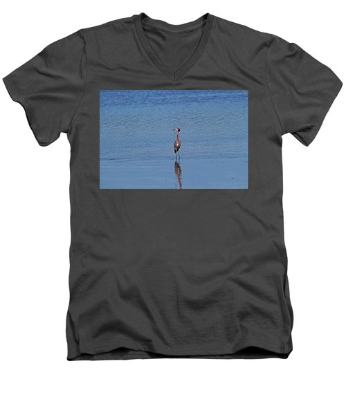 Men's V-Neck T-Shirt featuring the photograph Ding Darling's Number One IIi by Michiale Schneider