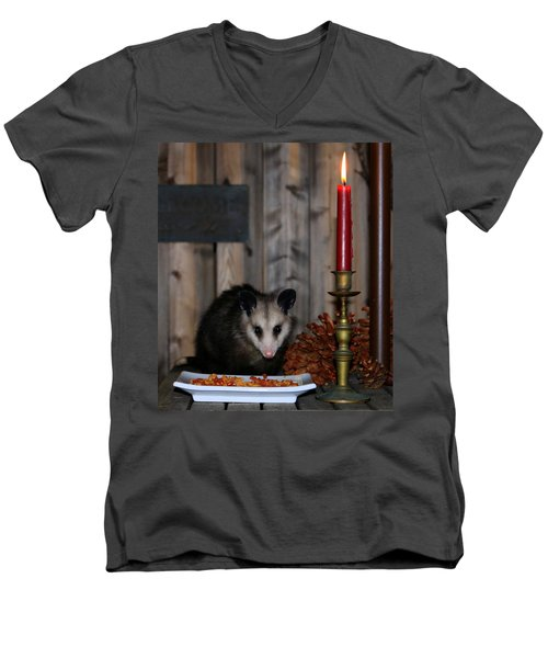 Dining Possums II Men's V-Neck T-Shirt