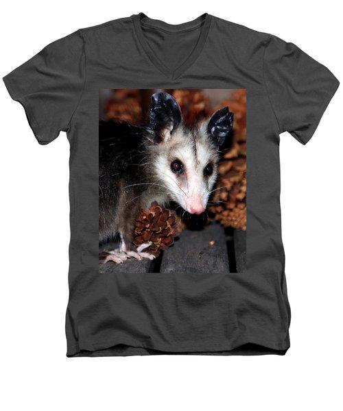 Dining Possums Vi Men's V-Neck T-Shirt