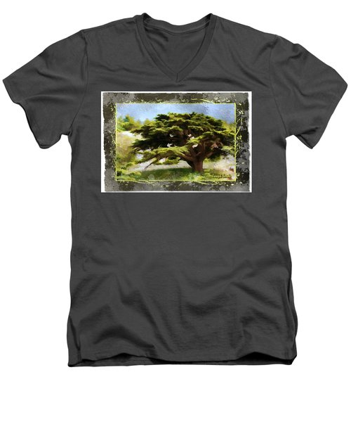 Do-00318 Cedar Barouk - Framed Men's V-Neck T-Shirt