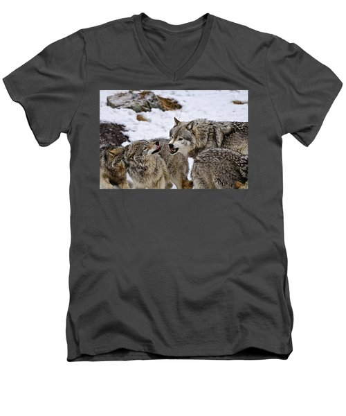 Men's V-Neck T-Shirt featuring the photograph Do I Have Your Attention Now by Michael Cummings