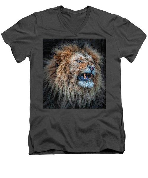 Do Not Disturb Men's V-Neck T-Shirt
