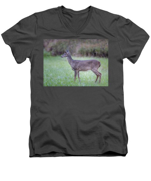 Men's V-Neck T-Shirt featuring the photograph Doe In Cades Cove by Tyson Smith