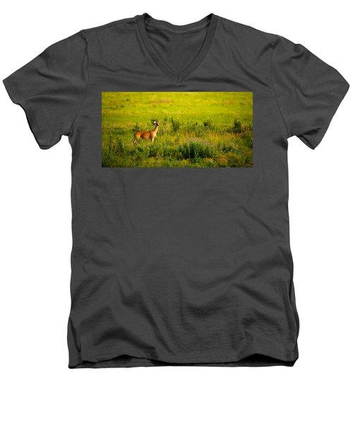 Whitetail Doe In Prairie Clover Men's V-Neck T-Shirt