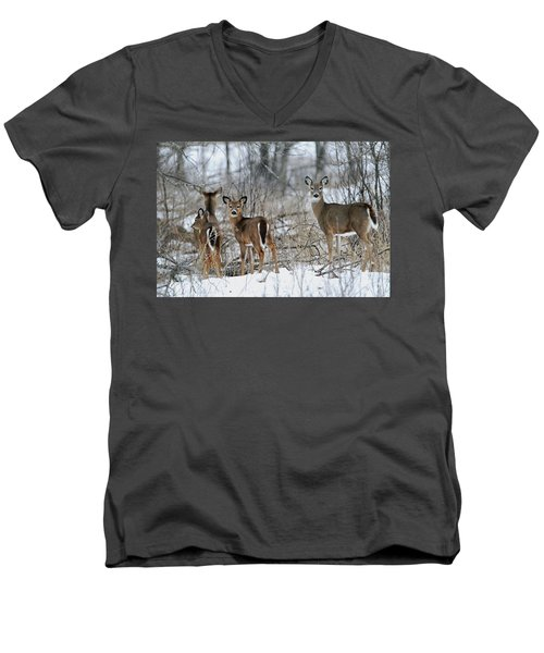 Does And Fawns Men's V-Neck T-Shirt by Brook Burling