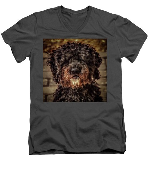 Dog  Men's V-Neck T-Shirt