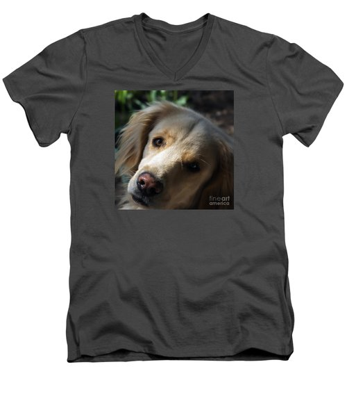 Dog Eyes Men's V-Neck T-Shirt