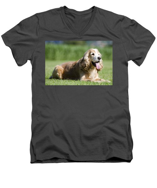 Dog Lying Down On The Green Grass Men's V-Neck T-Shirt