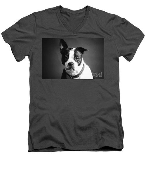 Dog - Monochrome 1 Men's V-Neck T-Shirt