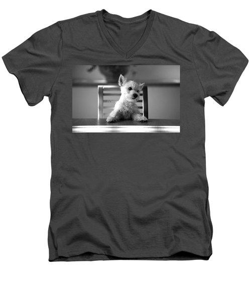 Dog Sitting On The Table Men's V-Neck T-Shirt