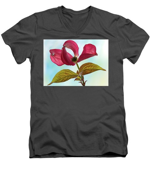 Dogwood Ballet 4 Men's V-Neck T-Shirt