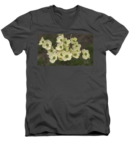 Dogwood Dance In White Men's V-Neck T-Shirt by Don Spenner