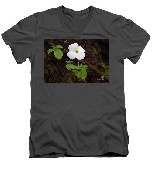 Men's V-Neck T-Shirt featuring the photograph Dogwood by Vincent Bonafede