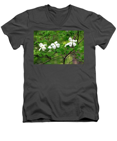 Dogwoods Men's V-Neck T-Shirt