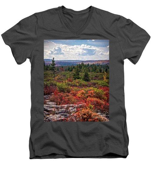Dolly Sods Wilderness In Autumn 4273 Men's V-Neck T-Shirt